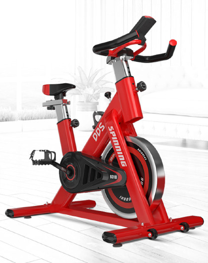 DDS 多德士动感单车家用室内健身车静音脚踏车运动自行车锻炼健身器材