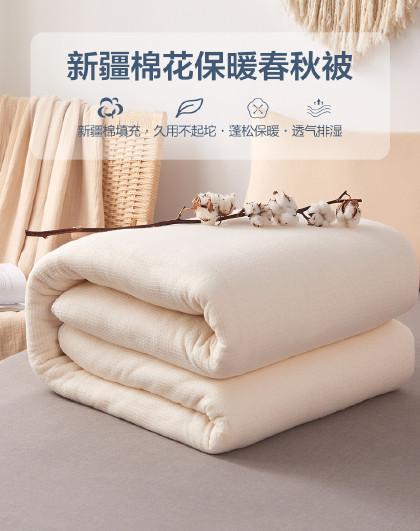 棉花被芯裸胎棉花被春秋被子母被柔软棉被四季被春秋被芯被子
