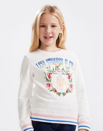 女童春秋卫衣李维斯中大童装学院风休闲套头卫衣