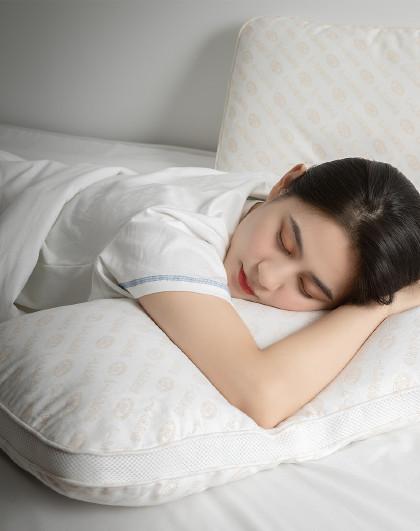 家用成人枕芯大人护颈椎单人助睡眠透气荞麦枕头护颈枕